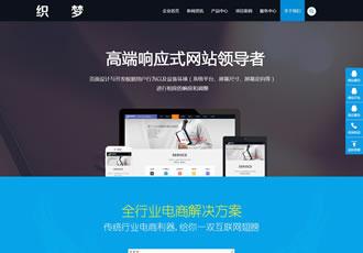 互联网网络建设计类企业织梦dedecms模板(带手机