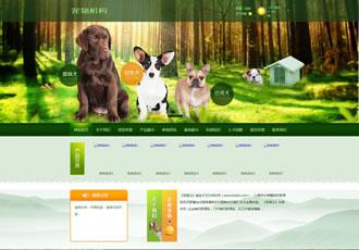 绿色宠物狗机构类网站织梦模板(带手机端)