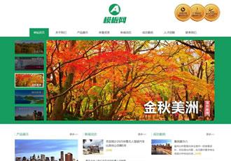 响应式入境国内出境旅游行业类网站织梦模板h